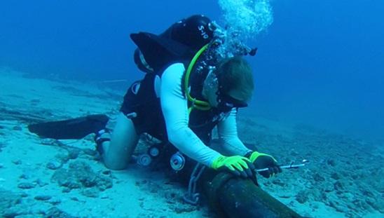 Sẽ mất 3 - 4 tuần để khắc phục xong sự cố đứt cáp biển Liên Á, AAG